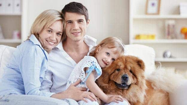 Wills & Trusts dog-young-family Direct Wills Surbiton